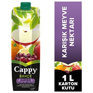 Cappy Karışık Meyve Nektarı 1 lt