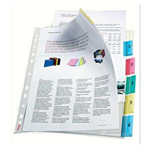 Esselte 414160 A4 Delikli Ayraçlı Şeffaf Poşet Dosya 6 Sayfalı