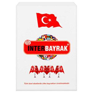 İnter İnt-B002 Türk Bayrağı 30 cm x 45 cm