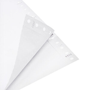 Avansas 11 inç x 24 cm Sürekli Form Kağıdı 2 Nüsha 1000'li buyuk 2