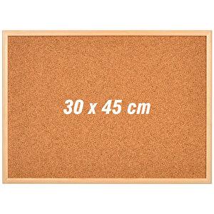 Avansas Mantar Pano Ahşap Çerçeve 30 cm x 45 cm buyuk 1