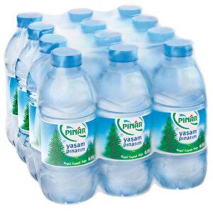 Pınar Su 0.33 lt 12'li Paket buyuk 1