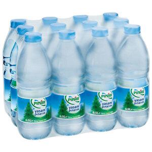 Pınar Su 0.5 lt 12'li Paket buyuk 1