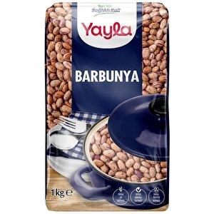 Yayla Barbunya 1 kg buyuk 1