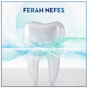 Oral-B Diş Eti ve Diş Minesi Bakımı Ferah Nane Ağız Bakım Suyu 500 ml  buyuk 6